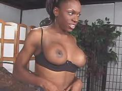 Ebony tranny with nice tits screwed by horny dude