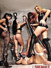 Four shemale dommes gangbang this slave