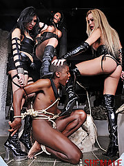 Submissive gets dominated by three ts dommes